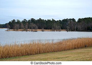 Beautiful Fall Lake Background