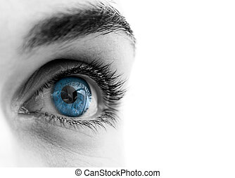 Blue eyes - Beautiful female Blue eyes