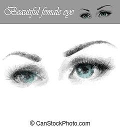 Beautiful female eye