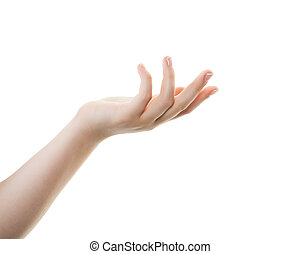 Beautiful female hand isolated on white background