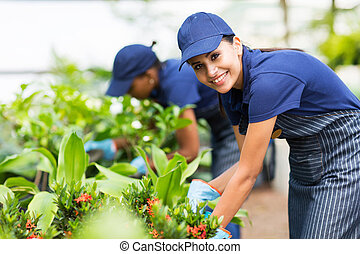 female nursery worker trimming plants - beautiful female...
