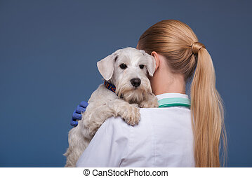 Beautiful female vet holding cute dog
