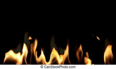 Beautiful  Fire on Black background