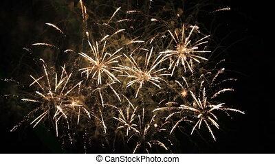 Beautiful Fireworks Exploding On Black Background. Slow Motion.