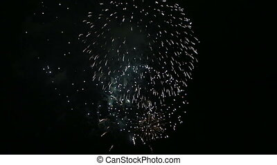 Beautiful fireworks in the night sk