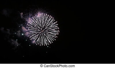 Beautiful fireworks in the park on a summer evening.