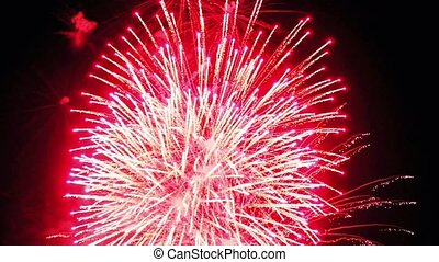 beautiful fireworks show in the night sky