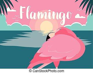 beautiful flamingo bird stand in the landscape
