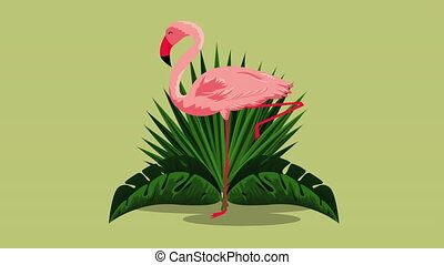 beautiful flemish exotic bird with flowers , hd video animation