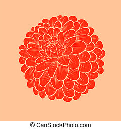 beautiful flower Dahlia drawn in graphical style contours ...