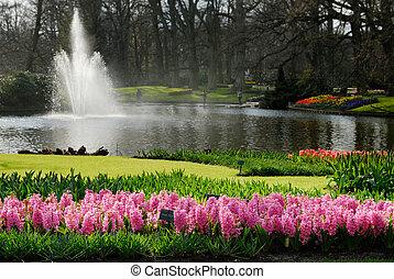 beautiful flower garden - beautiful garden of colorful...