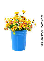Beautiful flower in pot isolated on white background