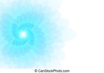 Beautiful flower on a white background.