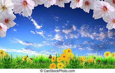 Beautiful flowers against the blue sky
