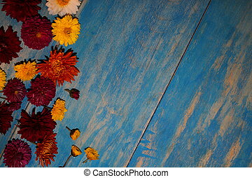 beautiful flowers of asters and daisies lie on wooden boards