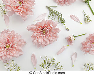 beautiful flowers on a light background