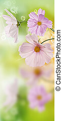 Beautiful flowers on abstract  spring nature background