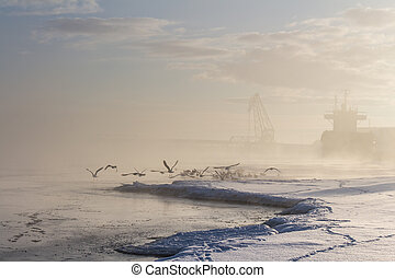 Beautiful foggy winter lanscape with flying birds and wood bulker