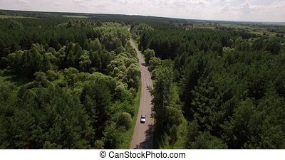 Beautiful forest and small road aerial view on a summer day