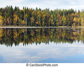 Beautiful forest lake in autumn