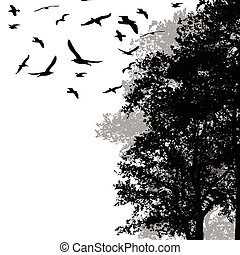 Beautiful forest trees with flying birds