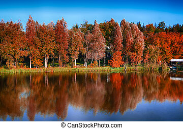 Beautiful forest with red foliage near the river in autumn