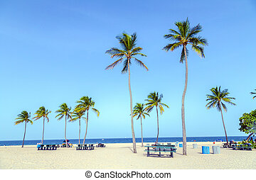 beautiful Fort Lauderdale beach