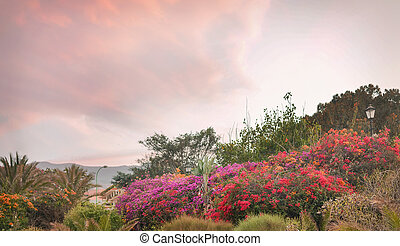 Beautiful, fragrant garden blloming in a spring