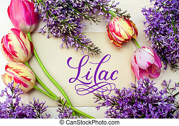 Beautiful frame of lilacs and tulips for greeting card with word lilac