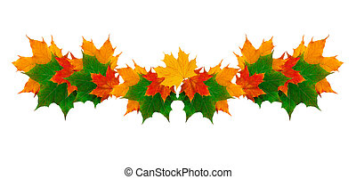 beautiful frame of yellow autumn leaves with place for text