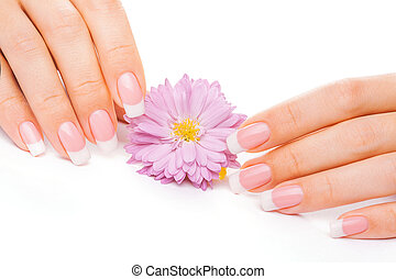 french manicure with chrysanthemum