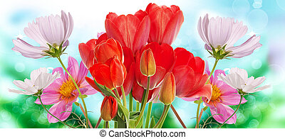 Beautiful fresh garden flowers on abstract spring nature backg