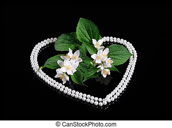 Beautiful Fresh Jasmine Flower and Reflection over Black with Heart of Pearl
