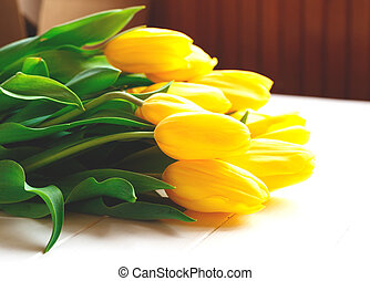 Beautiful fresh spring tulips on a white background