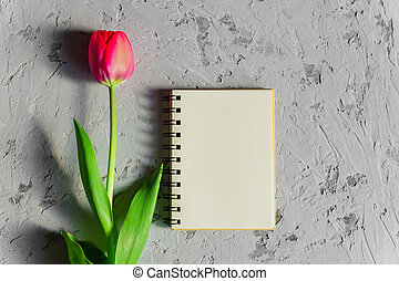 Beautiful freshly cut pink tulip and empty blank spyral note book on gray concrete background. Mock up with copy space.