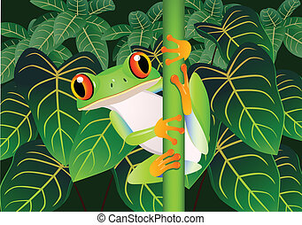 Vector illustration of Beautiful green frog