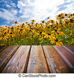 Beautiful garden background with empty wooden deck table....