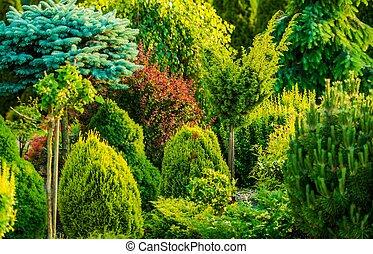 Beautiful Garden Closeup