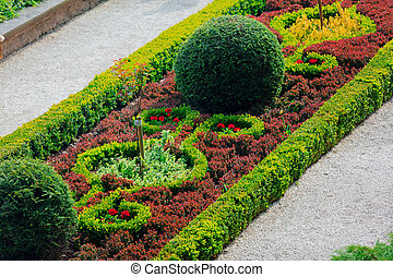 Beautiful garden decoration of bushes and flowers