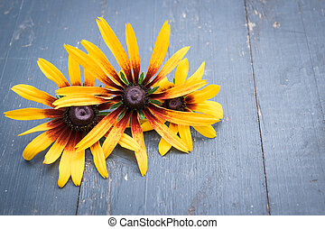 Beautiful Garden flowers on dark wooden table background. Backdrop with copy space