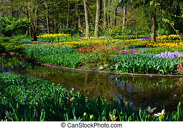 Beautiful garden. Park in The Spring. Spring landscape.