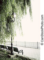 beautiful garden walkway with lamps, willow tree and bench