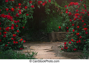 Beautiful garden with blooming rose bushes in summer