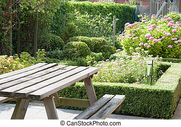 beautiful garden with evergreen boxwood plants