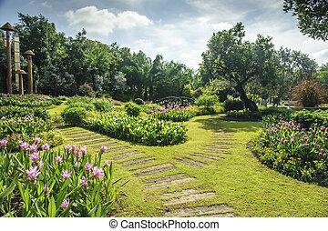 Beautiful garden with walkway its way through