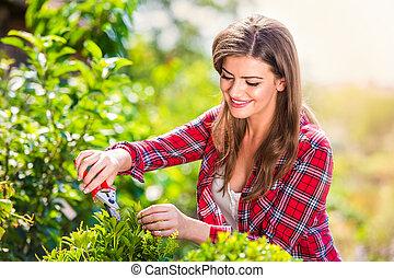 Beautiful gardener pruning little tree, green sunny nature -...