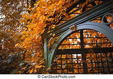 Beautiful gazebo surrounded by autumn leaves, landscape