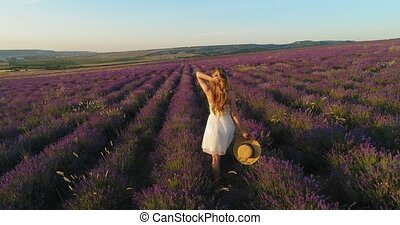 Beautiful girl in a white dress with a straw hat in her hands walking on a field of lavender. Aerial shoot