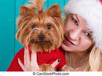 girl in santa cap with yorkie dog in red sweater