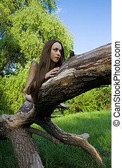 Beautiful girl lying on a tree